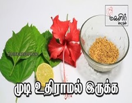 Hair fall control tips in Tamil | Beauty tips in Tamil
