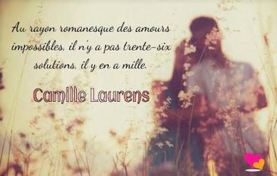 Citation de Camille Laurens sur les amours impossibles