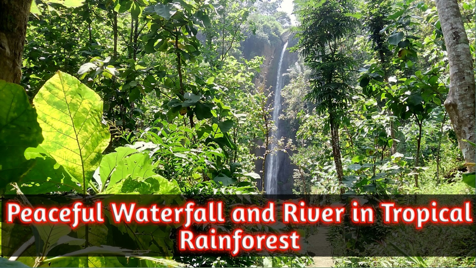 Peaceful & Calming Natural Music Sounds of Waterfall River