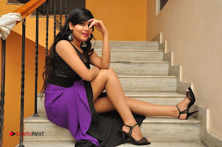 Telugu Actress Rachana Smith Stills at Money is Honey Audio Release  0113.jpg