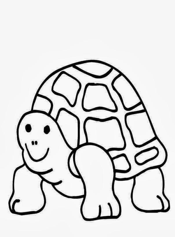 desenhos de tartaruga para colorir e imprimir desenhos