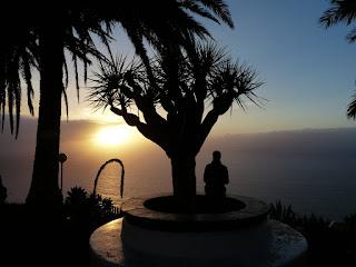 Hespérides | El drago, sangre de dragones en Canarias II Historia
