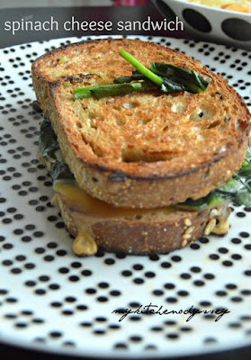 cheese spinach sandwich3