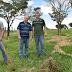Árvores frutíferas estão sendo plantadas na Vicinal Zequinha de Abreu atendendo pedido do Vereador Bariotto
