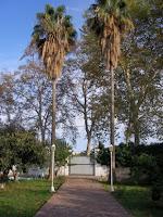 venta chalet castellon avda enrique gimeno jardin2