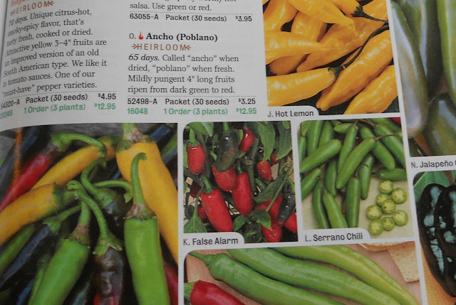 Ordering seeds from a catalog