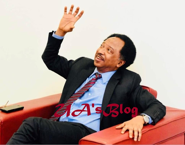 2019: Shehu Sani reveals what'll happen during general election