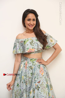 Actress Pragya Jaiswal Stills in Floral Dress at turodu Interview  0093.JPG
