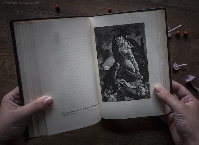 Illustration by Martin Van Maële, He-goat Gathering, Witches Sabbat