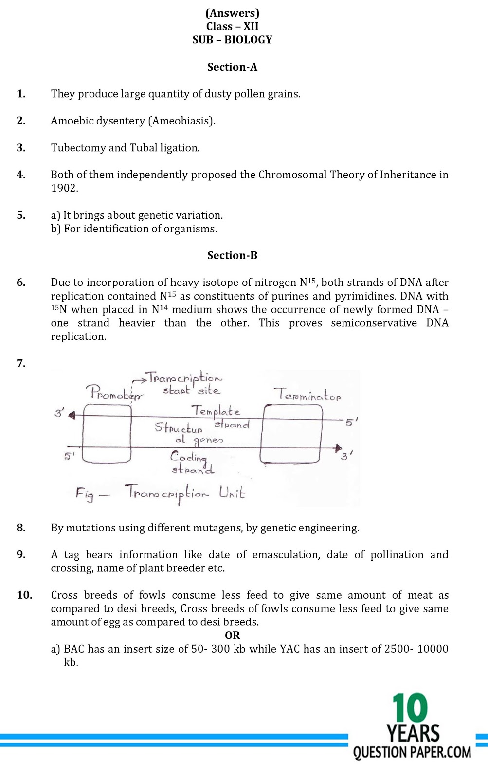CBSE class 12th Biology answer sample paper