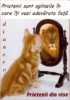 Prietenii sunt oglinzile în care îţi vezi adevărata faţă.