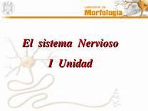 http://ceiploreto.es/sugerencias/A_1/Recursosdidacticos/QUINTO/datos/02_Cmedio/datos/05rdi/ud05/02.htm