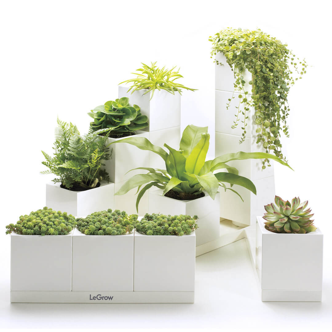 Plantas artificiales para decorar tu hogar diariodeco for Arbustos artificiales para exterior