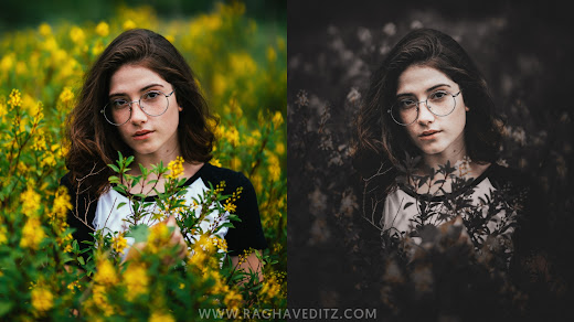 Lightroom Mobile Preset