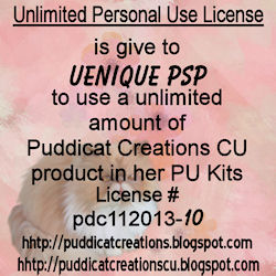 Unlimited Personal Use License