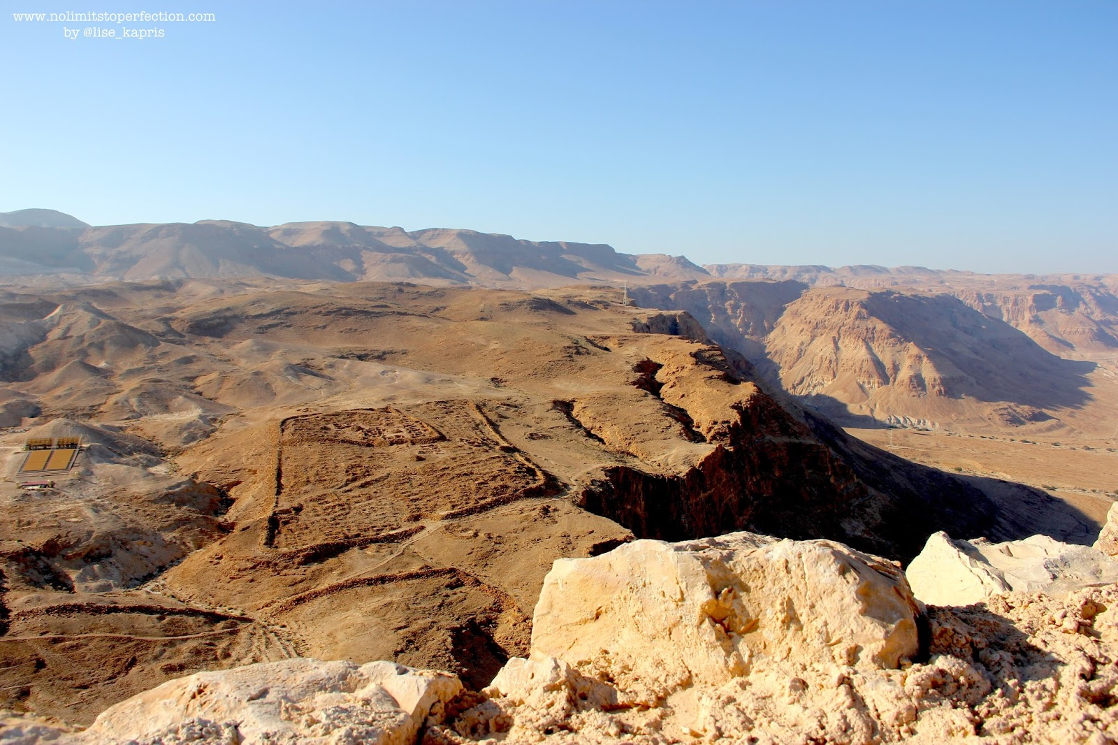 Лис Каприс в Израиле