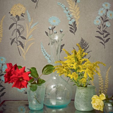 Fired Earth Paints Wallpapers Karen Barlow