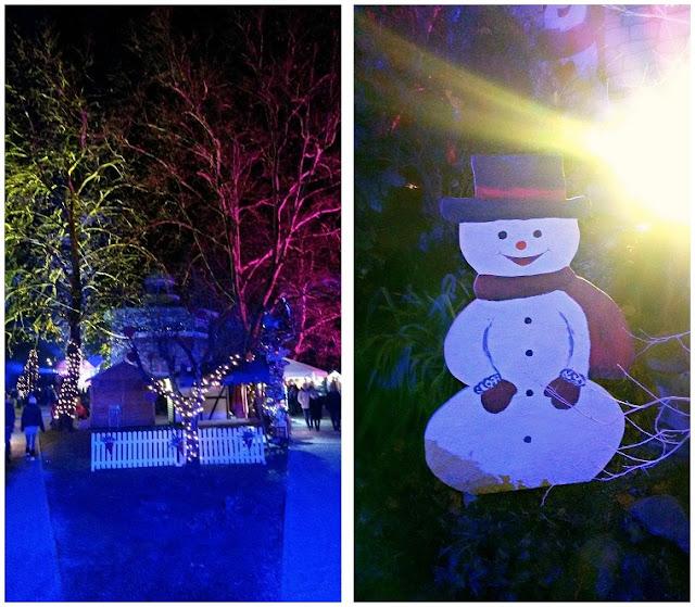 advent, new year, nova godina, bor, christmas tree, božićno drvce, snowflakes, božić, winter, zima, square, božićna bajka, koprivnica, magical, lampice, colors