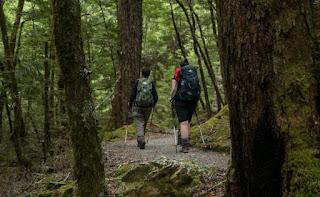 yürüyüş, yürüyüş yapmanın faydaları nelerdir, yürüyüşün faydaları, yürüyüş yapmak, yürüyüş yapmanın sağlı yararları, sağlık için yürüyüş, nasıl yürümeli, ne kadar yürümeli