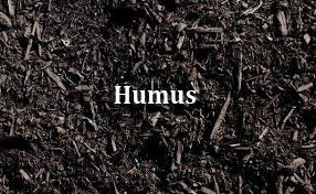 pengertian tanah humus