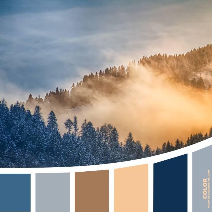 color_474