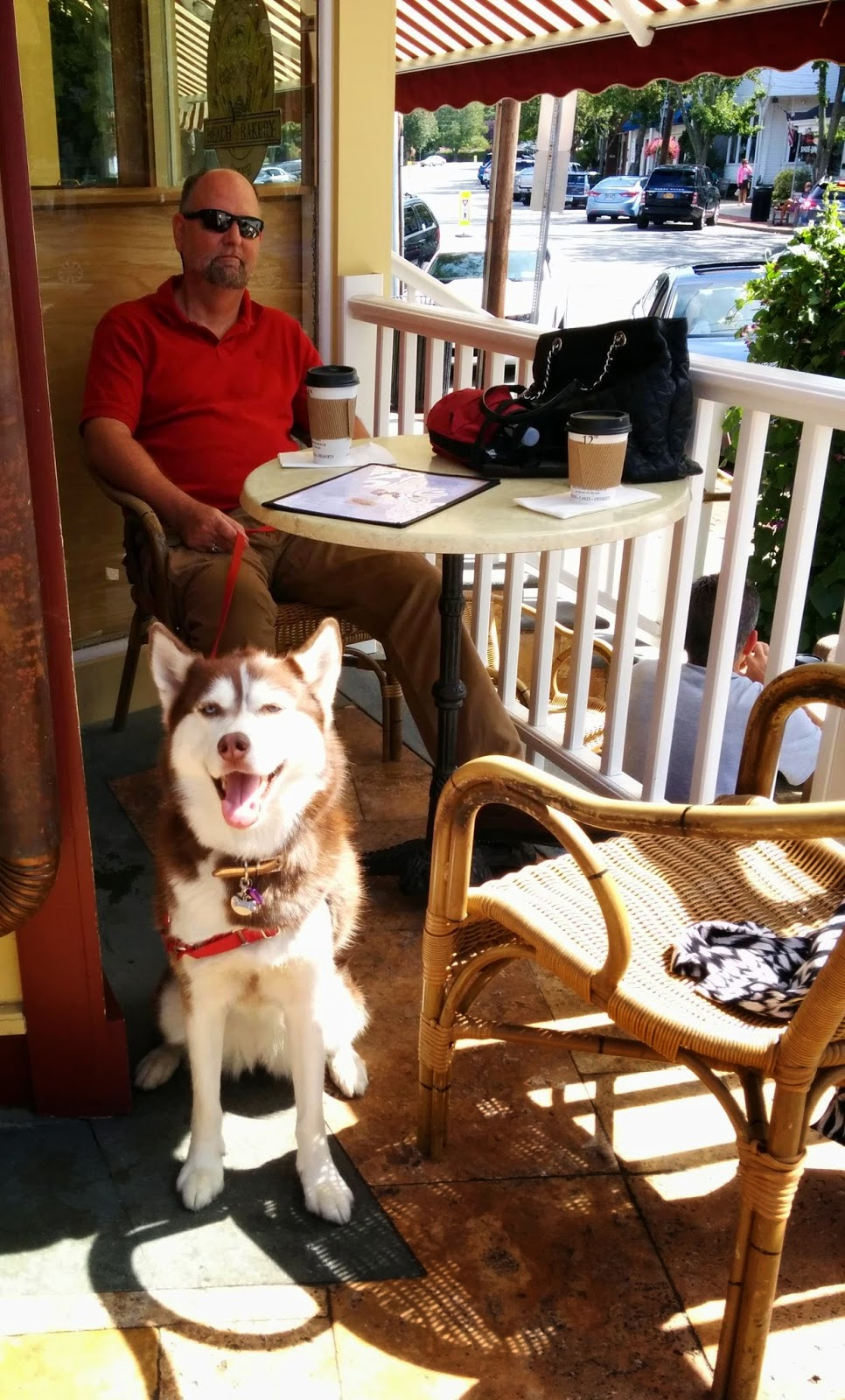 Dog friendly Beach Bakery Grand Cafe in West Hampton is a great place for breakfast or lunch with your pooch