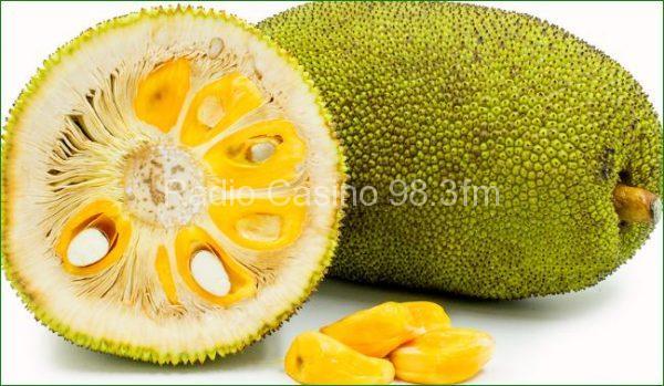 Propiedades del Jackfruit