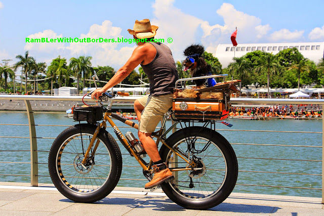 man and dog on bicycle, Singapore