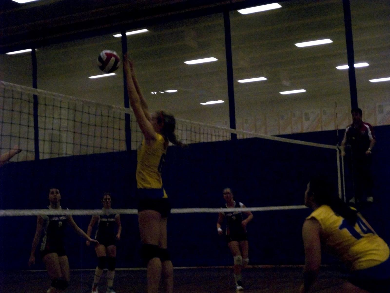 resultat tqo volley