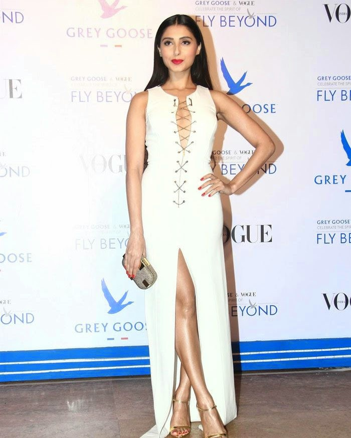 Pernia Qureshi, Pics from Red Carpet of Grey Goose & Vogue's Fly Beyond Awards 2014