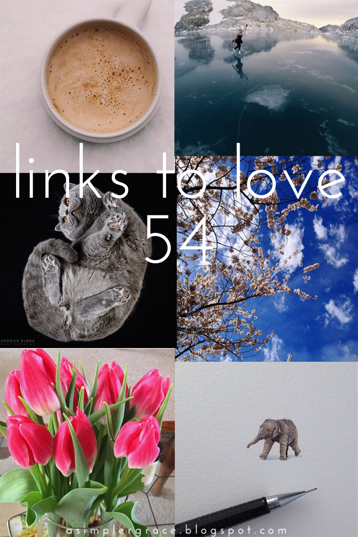 Links to Love | 54 - A Simpler Grace - My favorite reads from the week.