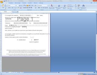 11 - Taxe Profesionnel : Explication simple et le formulaire sur EXCEL