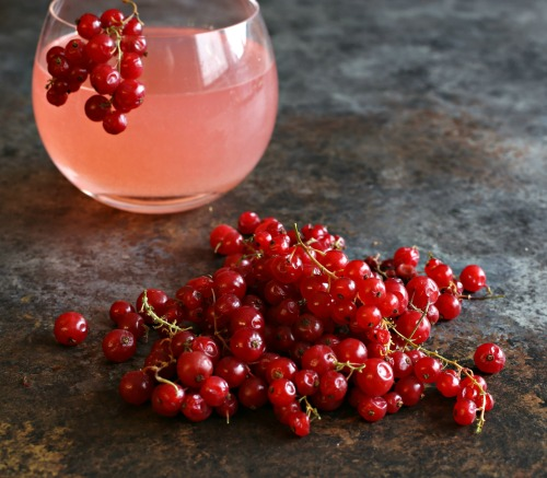 Sparkling-Red-Currant-Cosmopolitan-4