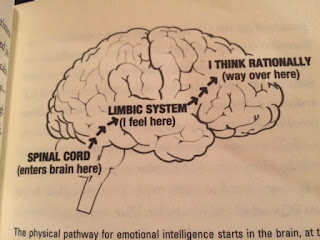 This brain graphic explains my irrational tantrum about my running