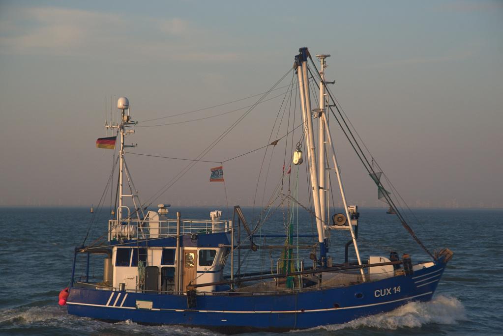 #274 Kiron Macro f3.8-f5.6 28-210mm – 1€ Projekt – Fischkutter