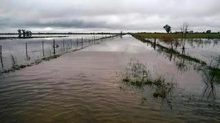La provincia de Santa Fe ya tiene 7 millones de hectáreas afectadas por el agua. 12 de los 19 departamentos reportaron inundaciones. Casi 1.200 personas debieron abandonar sus casas por las crecidas de los ríos Salado y Paraná. La situación del sector agrepecuario es desesperante.