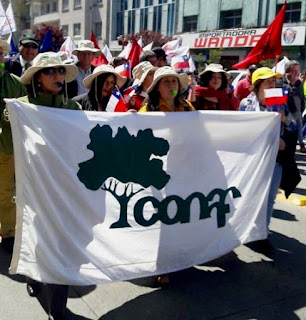 Fenasic llamó a trabajadores de Conaf a sumarse a paro nacional