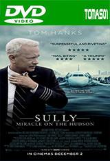Sully: Hazaña en el Hudson (2016) DVDRip