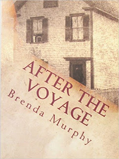 After the Voyage: An Irish American Story by Brenda Murphy