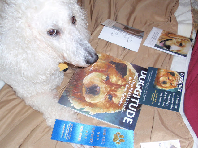 Standard Poodle, Carma Poodale, with #Doggitude books