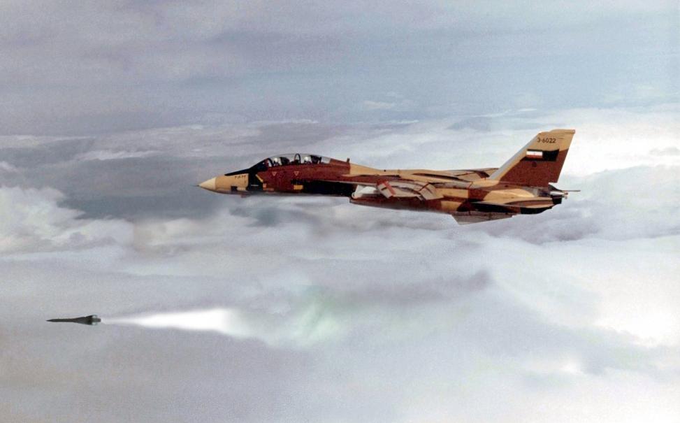 O IM-54 Phoenix era um míssil muito eficiente e, comparavelmente, apenas aos F-14.