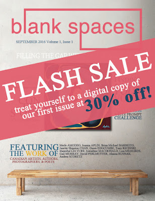 flash sale issue 1 blank spaces