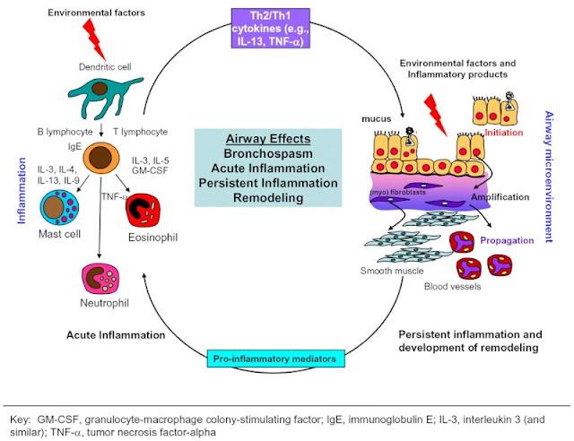 Pengobatan asma