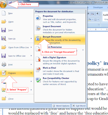 microsoft word password protected read only