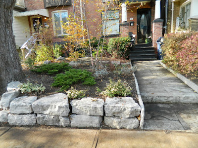 Greektown on the Danforth Fall Front Garden Cleanup after by Paul Jung Gardening Services
