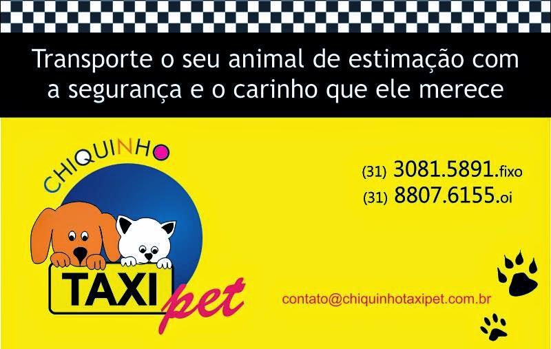 chiquinhotaxipet.com.br