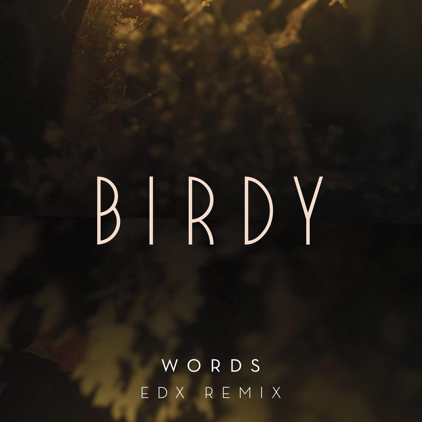 Birdy - Words (EDX Remix) - Single Cover