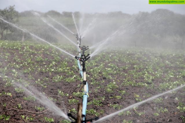 El Gobierno de Canarias adjudica los 6 millones de euros de compensación para el agua de riego agrícola de 2017