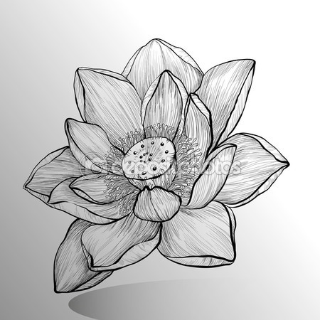 Mejores Plantillas De Tatuajes De Flores Imagui