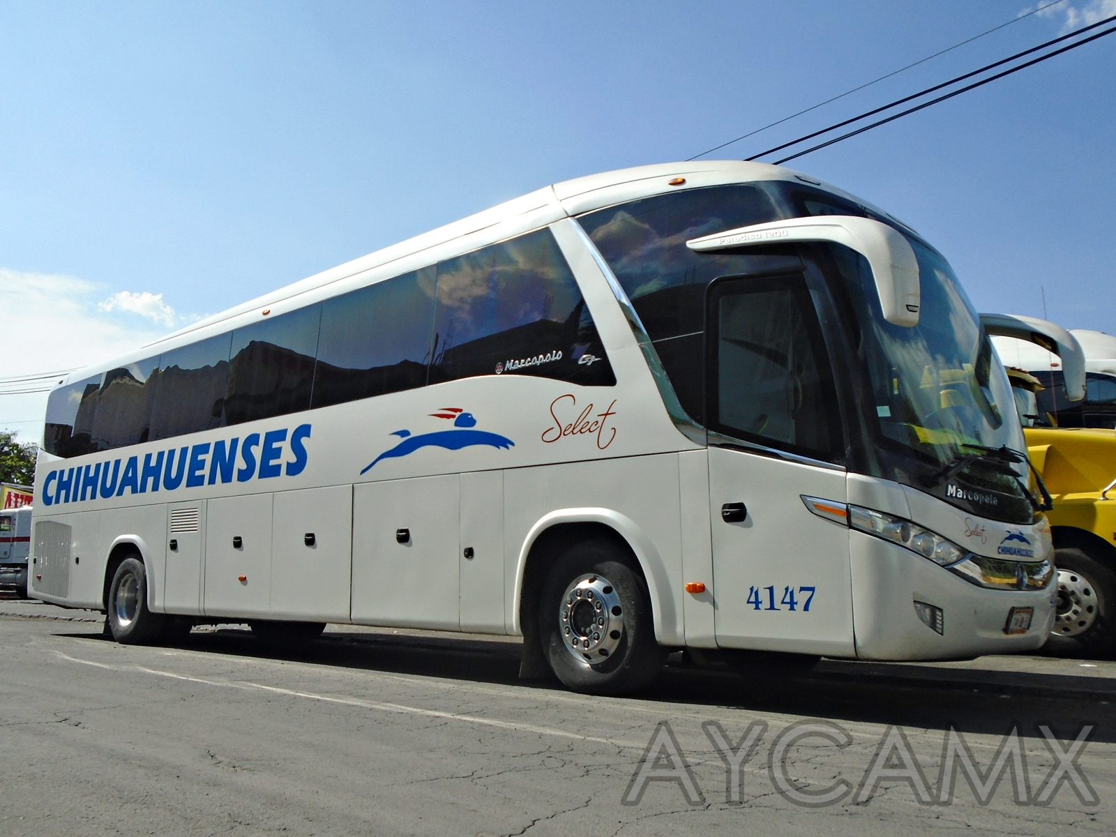 Mercedes benz mexico autobuses related keywords mercedes for Www mercedes benz mexico
